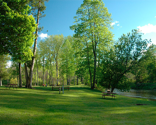 Photo of Rifle River Campground 1